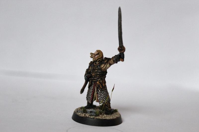 Galerie dadou91 [Rohan, Gondor, Fiefs] Img_0314