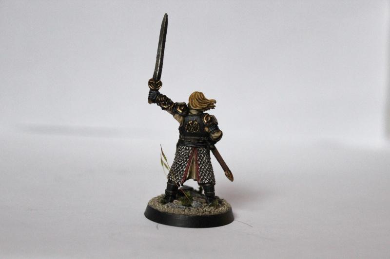 Galerie dadou91 [Rohan, Gondor, Fiefs] Img_0315