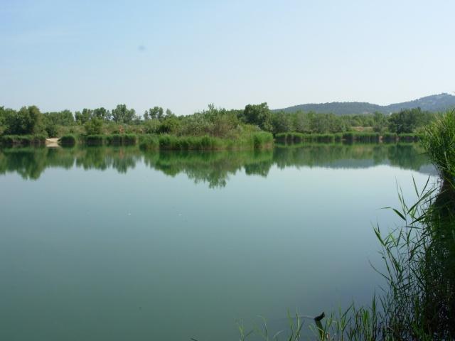 L'étang 00310