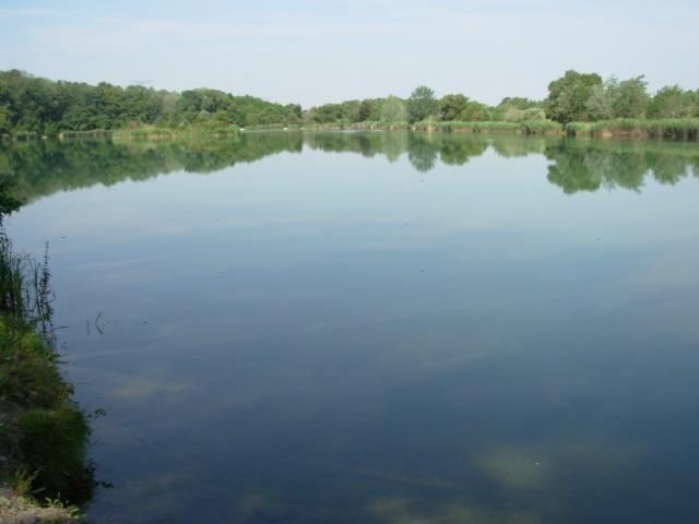 L'étang 00510