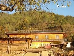 La Chine sac au dos (10) : «Treks des gorges du Tigre au Lugu Hu avec des copains du Club Alpin Paris» 2 ème épisode : de Daju au Lugu hu  Zhuang10