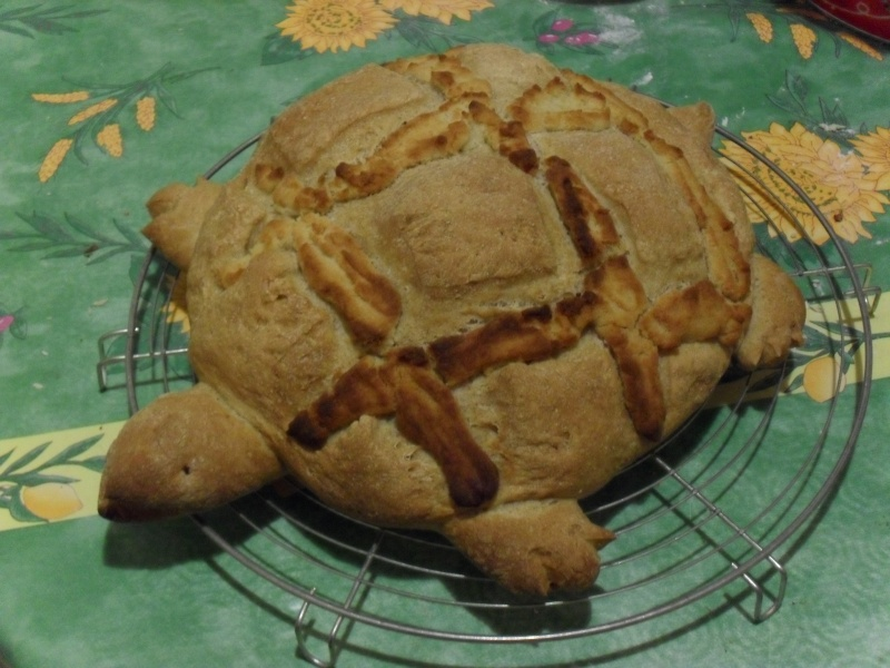 pain maison - Page 2 Sdc12010