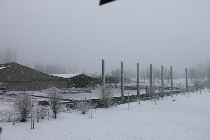 Petitpom construit un hangar à pdt ! Appare15