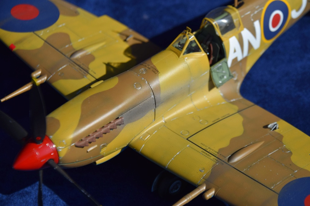 Spitfire MkVIII - Tamyia 1/32 Dsc_0342