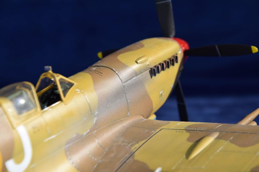 Spitfire MkVIII - Tamyia 1/32 Dsc_0345