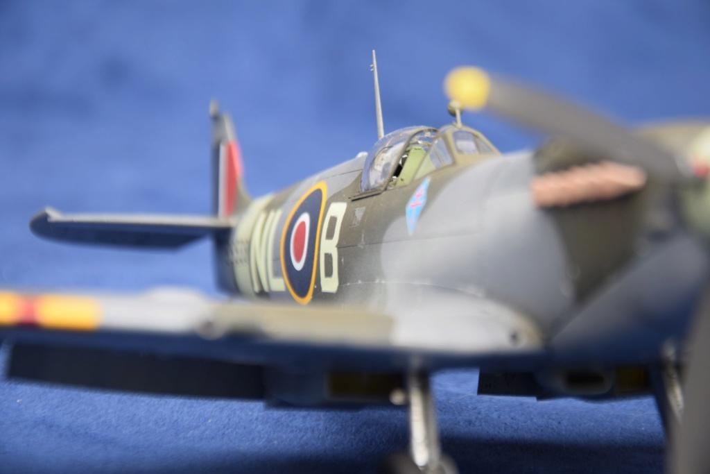 Spitfire Mk IXC - Tamyia 1/32 Dsc_0407