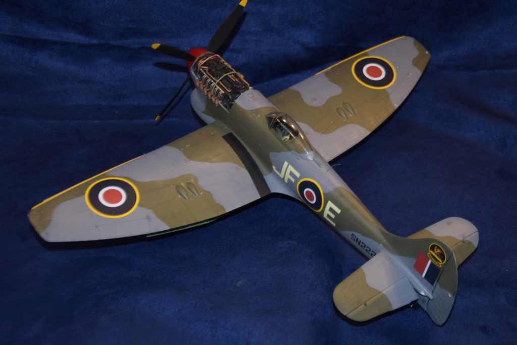 Hawker Tempest MkV - SH 1/32 Dsc_0492