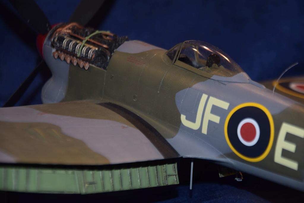 Hawker Tempest MkV - SH 1/32 Dsc_0493