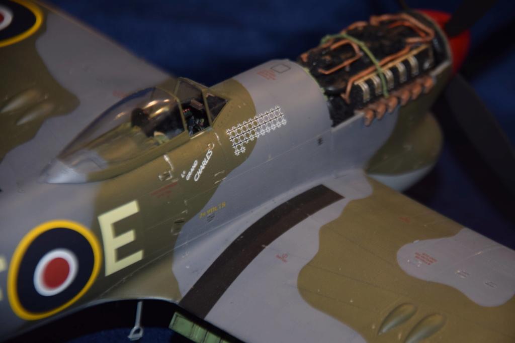 Hawker Tempest MkV - SH 1/32 Dsc_0494