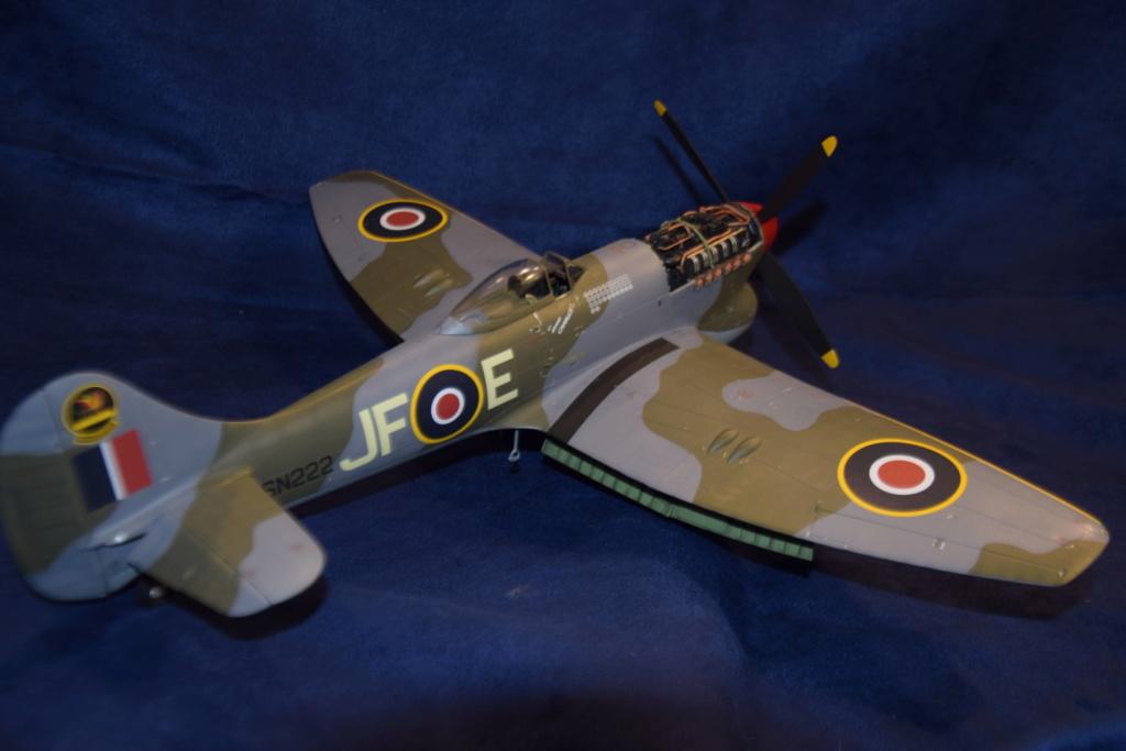 Hawker Tempest MkV - SH 1/32 Dsc_0495