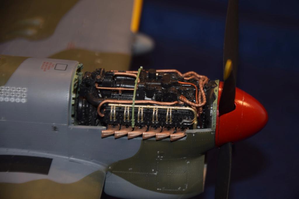 Hawker Tempest MkV - SH 1/32 Dsc_0496