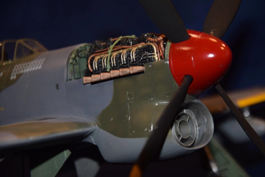 Hawker Tempest MkV - SH 1/32 Dsc_0497