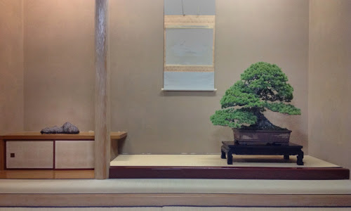 "Indoor displays, at the ""Omiya Bonsai Art Museum"" Saitama, Tokyo Peter_10"