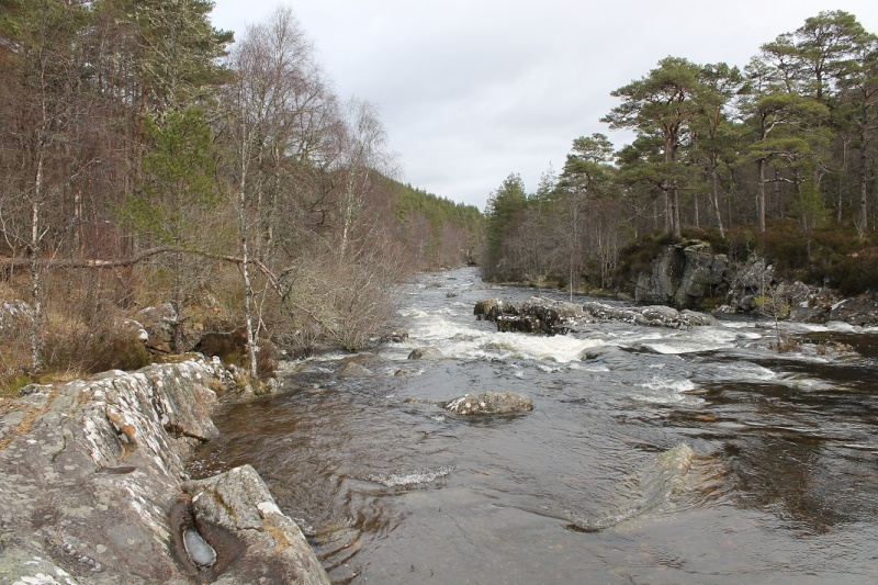 Glen Affric in Inverness-shire. Ga510