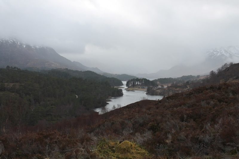 Glen Affric in Inverness-shire. Ga910