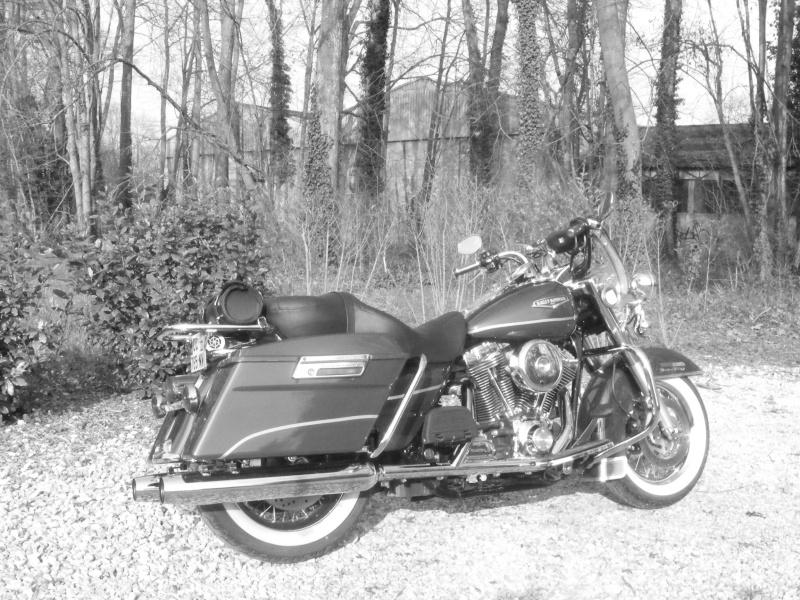 Road King uniquement, combien sur Passion-Harley  - Page 3 Dscf2615