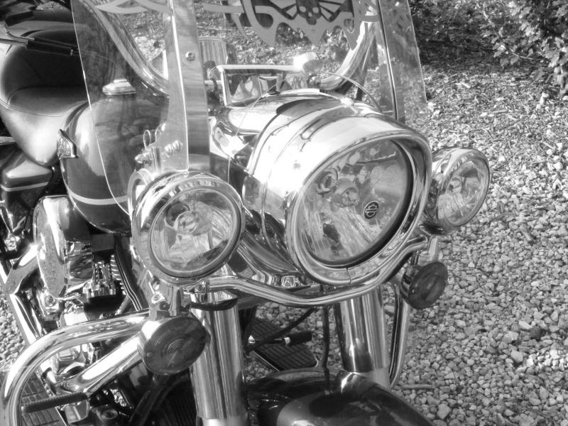 Road King uniquement, combien sur Passion-Harley  - Page 3 Dscf2616