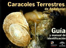 Malacofaune du sud de l'Espagne : Caracoles terrestres de Andalucía Caraco10