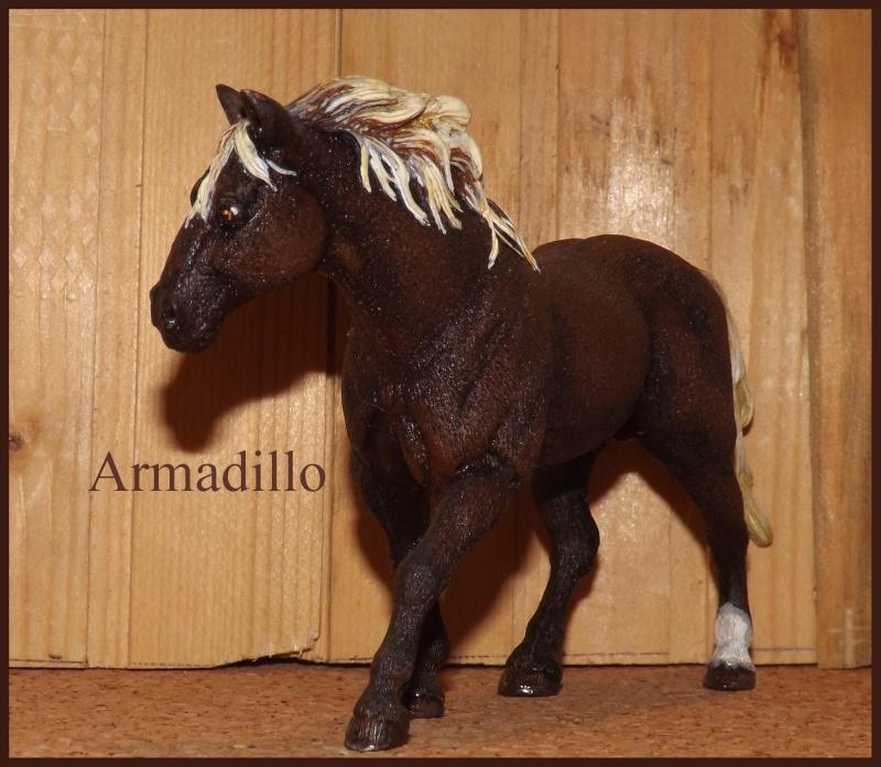 Allia17' Schleich Horse - Page 2 Armadi10