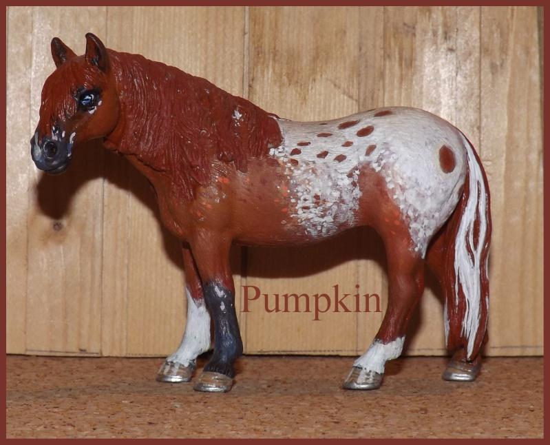 Allia17' Schleich Horse - Page 2 Pumpki10