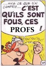 Questions de grammaire - Page 40 Fous_c10