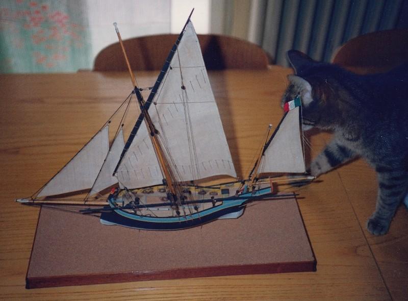modelli dal libro Vele della costa occidentale  ENRICO PILANI - Pagina 2 Img_0010