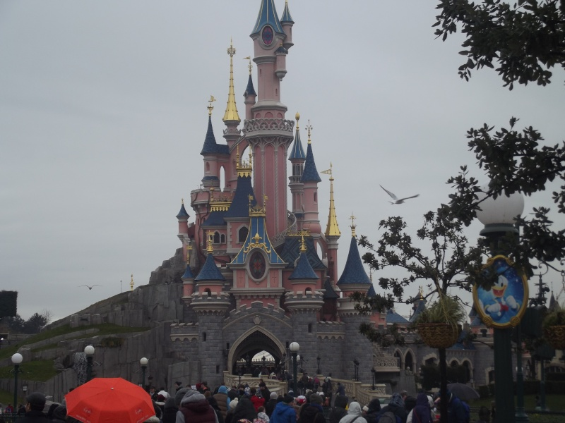 10 belges lâchés à Disneyland ! Dscf4118