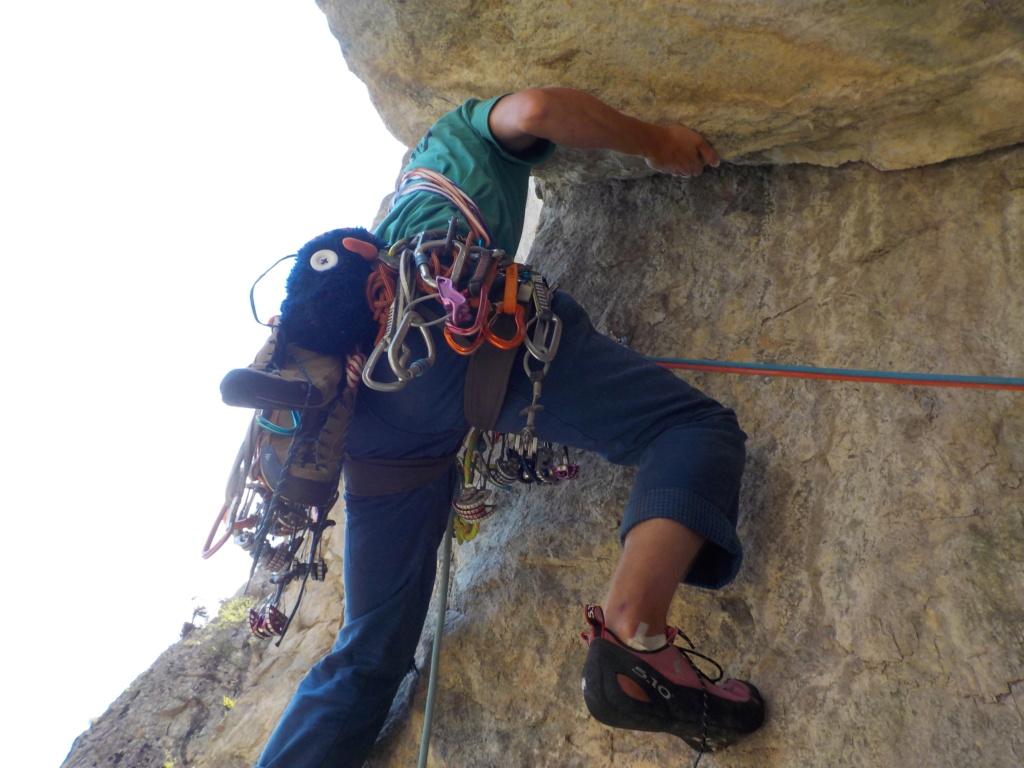 BigWall du Mt Palastre Dscn1517