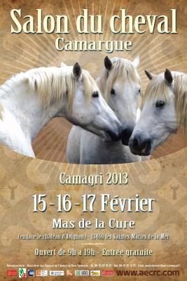 Salon du cheval Camargue 18157111