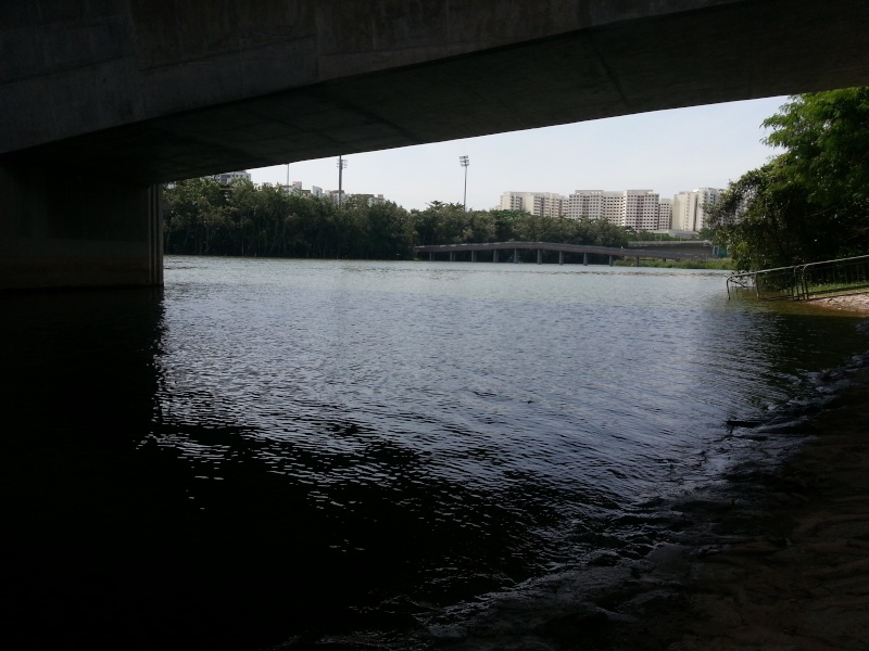 As per Boss request recce for playing boat location in Punggol/Sengkang 20130217