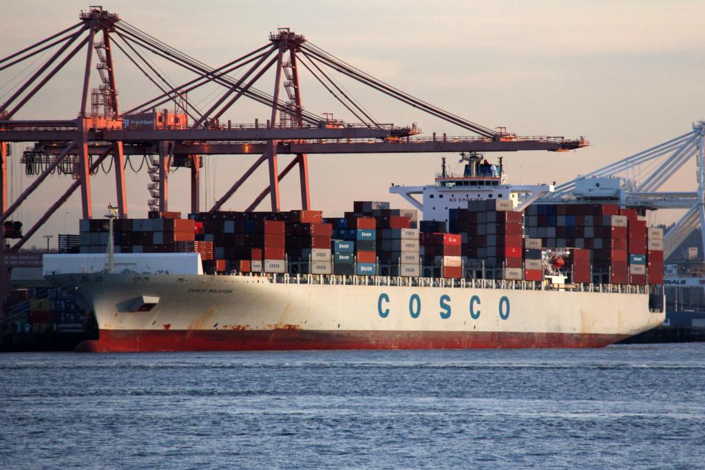 Sauvetage audacieux par le boxship COSCO et la Garde côtière 19155710