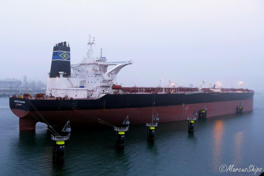 La flotte Euronav 29707010
