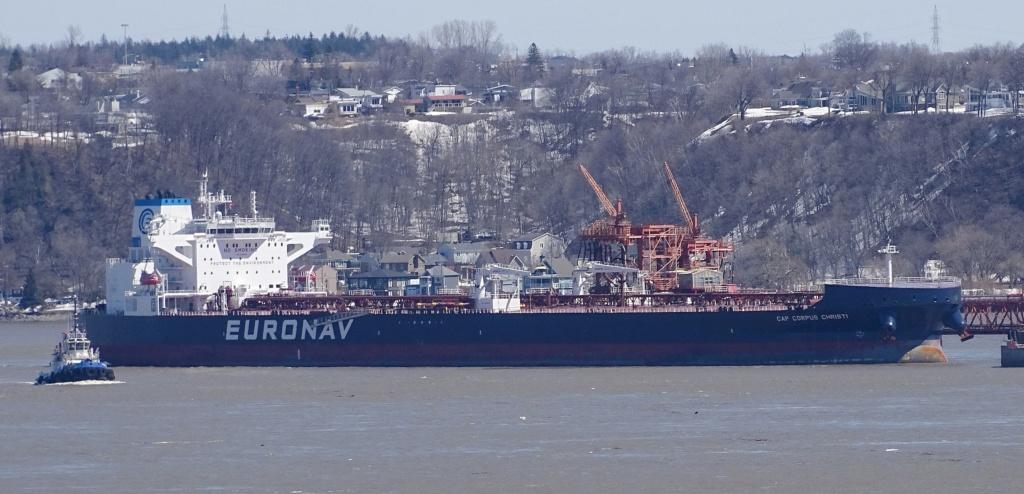 La flotte Euronav - Page 2 29953310