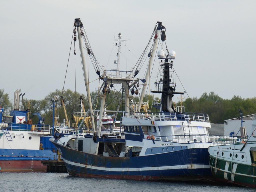 Photos des Navires Belge de la marchande,Fluviale et Pêche 1 Avatar10