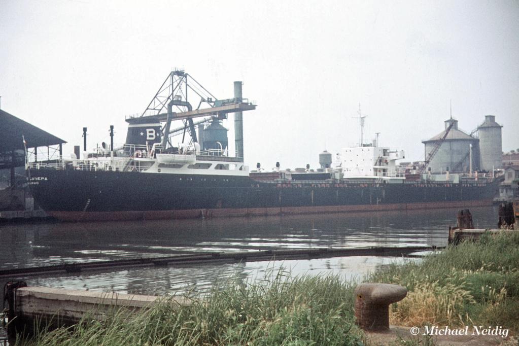 Photos Navires du monde construit entre 1950-1960 (7) Carlo_11