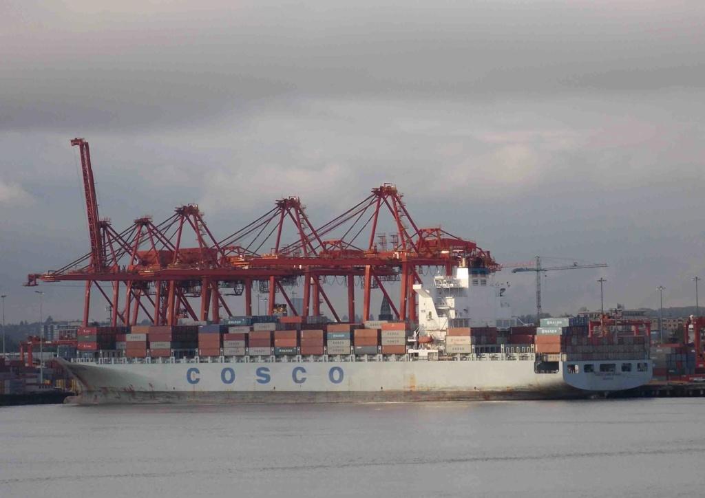 Photos de navires Luxembourgeois Armateur enre Belgique C Cosco_10