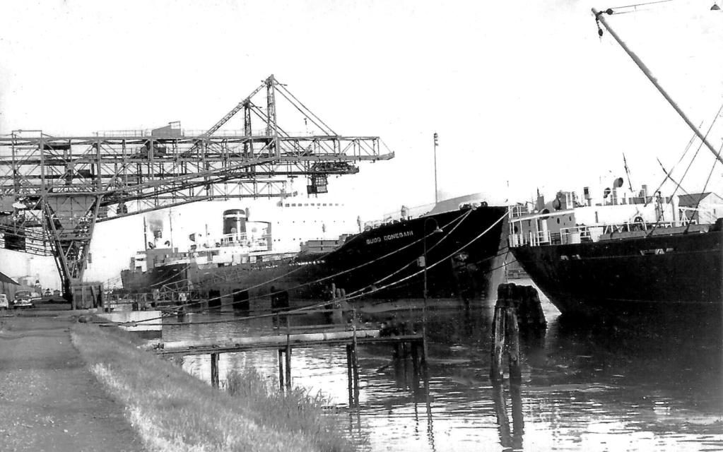 Photos Navires du monde construit entre 1950-1960 (2) Guido_10