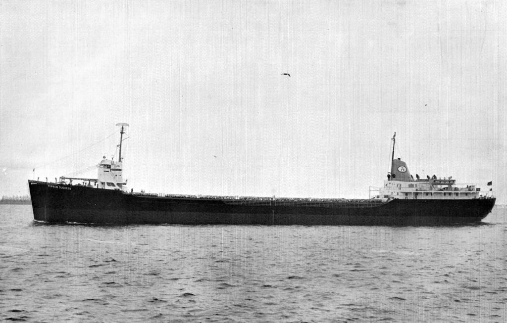 Photos Navires du monde construit entre 1950-1960 (3) Gypsum10