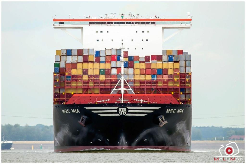 Global Actualité maritime  2020 - Page 2 Msc_mi11