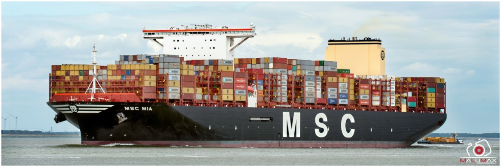 Global Actualité maritime  2020 - Page 2 Msc_mi13