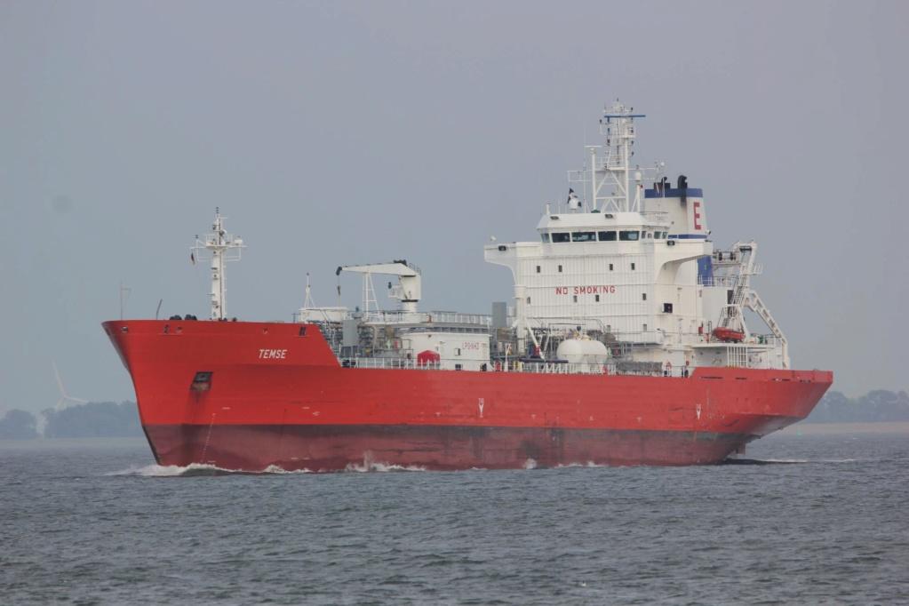 Photos des Navires Belge au 20-05-2020 (T, V, W) Temse_10