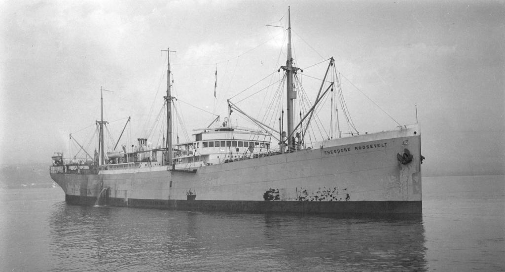 Photos General cargo avant 1940 (Plus 3000gt) 13 Theodo12
