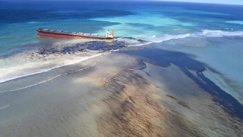 Naufrage du Wakashio : ce désastre écologique dont personne  Wakash10