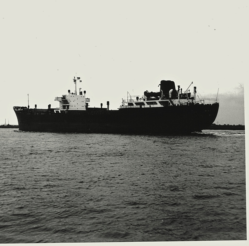 Photos Navires du monde construit entre 1950-1960 (5) White_11