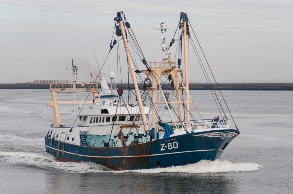 Photos des Navires Belge de la marchande,Fluviale et Pêche 3 Z_60_b10