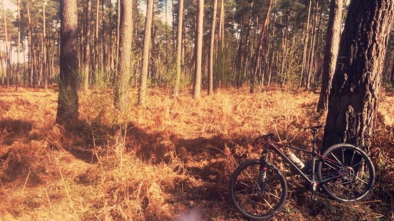 [dimmak] Nouveau dIMMAk bike !!!! Image210