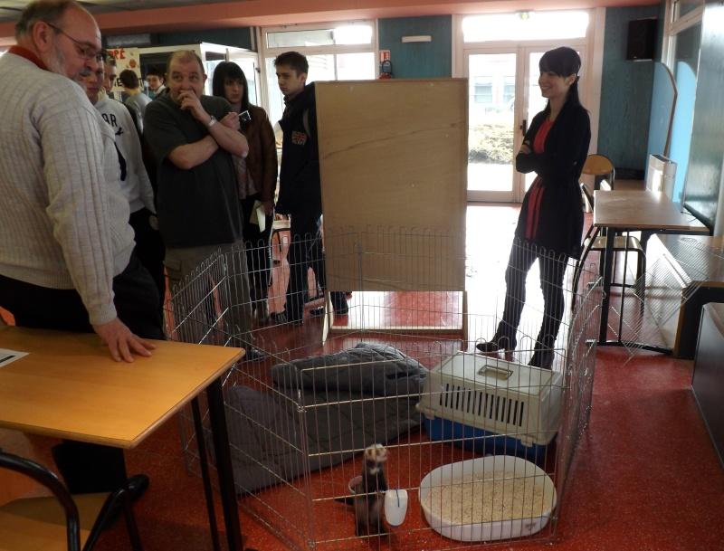 Sensibilisation des jeunes à la cause animal au Lycée Beaupré ! Jeudi 4 Avril 2013 Dscf6615