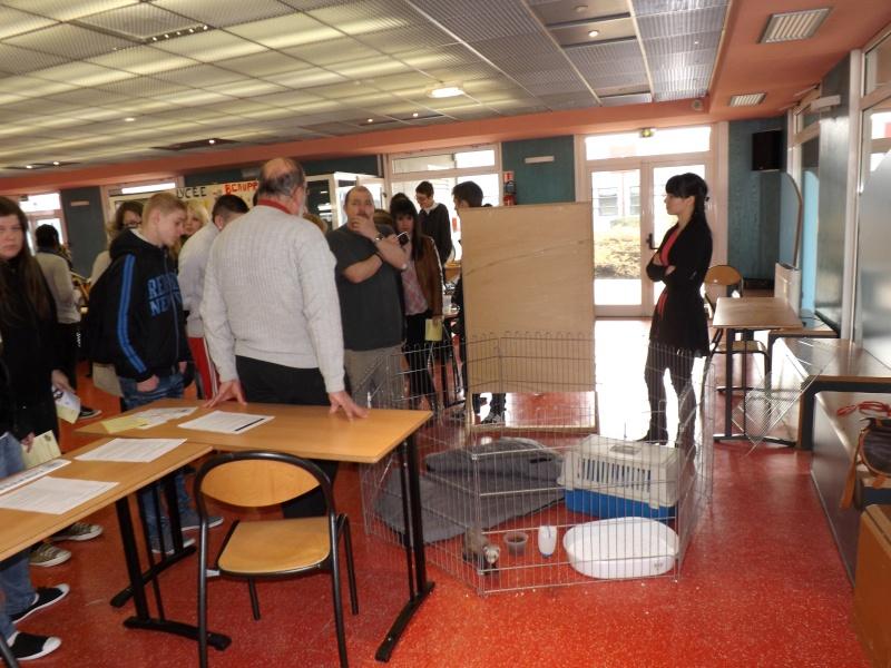 Sensibilisation des jeunes à la cause animal au Lycée Beaupré ! Jeudi 4 Avril 2013 Dscf6616