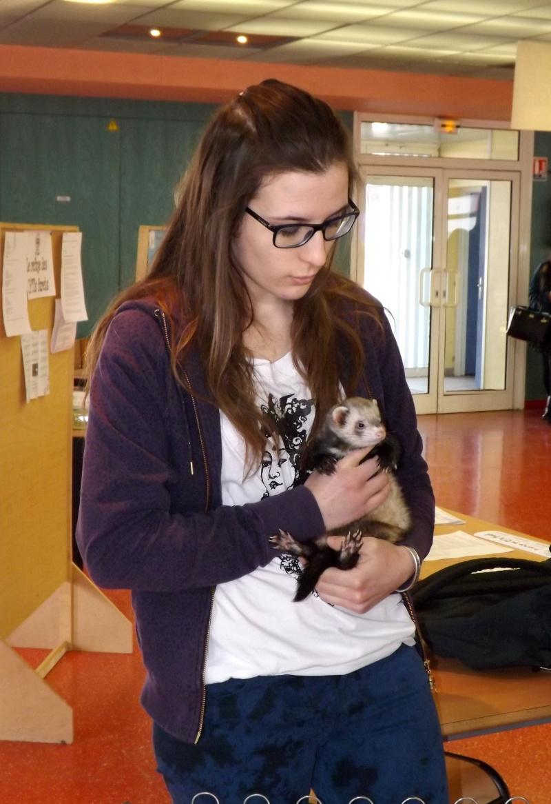 Sensibilisation des jeunes à la cause animal au Lycée Beaupré ! Jeudi 4 Avril 2013 Dscf6617