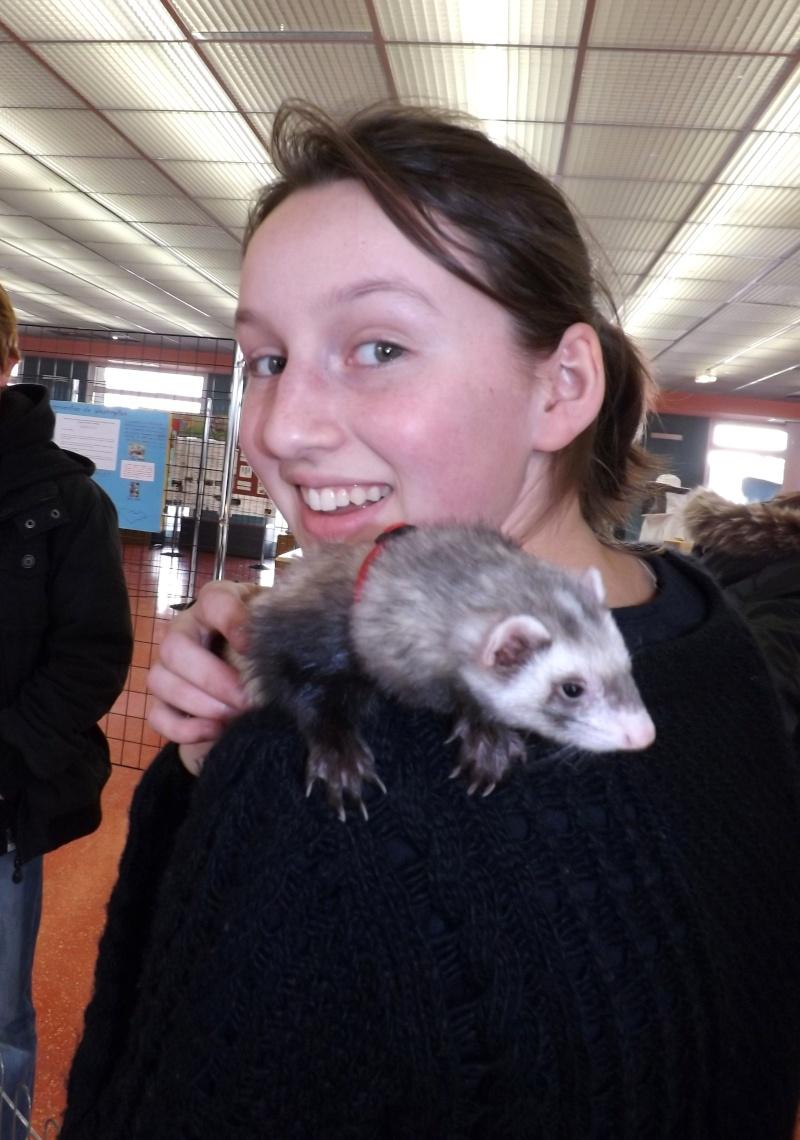 Sensibilisation des jeunes à la cause animal au Lycée Beaupré ! Jeudi 4 Avril 2013 Dscf6618